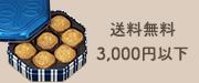 送料無料3,000円以下