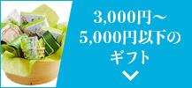 送料無料・込み 3,000円~5,000円