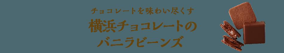 チョコレートを味わい尽くす 横浜チョコレートのバニラビーンズ