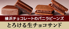 横浜チョコレートのバニラビーンズ