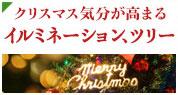 クリスマス気分が高まる イルミネーション、ツリー