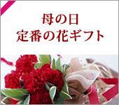 母の日定番の花ギフト
