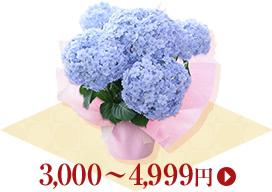 3,000円~4,999円