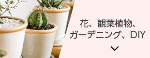 花、観葉植物、ガーデニング、DIY