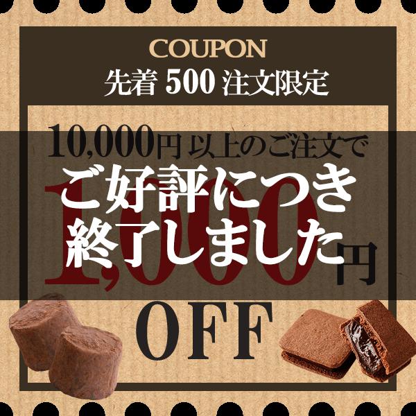 クーポン 先着500注文限定 10,000円以上のご注文で1,00円OFF