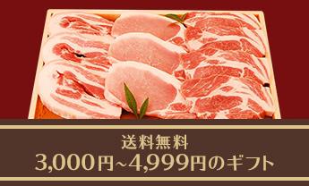 送料無料 3,000~4,999円以下のギフト