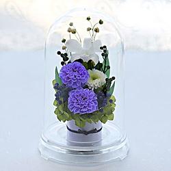 送料無料。美しいプリザの仏花