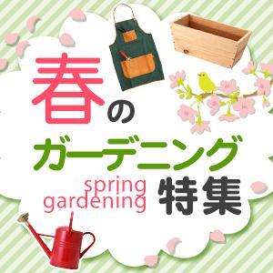 春のガーデニング特集
