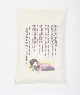 天川コシヒカリ 棚田米