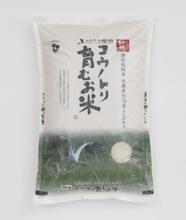特別栽培米 コウノトリを育むお米
