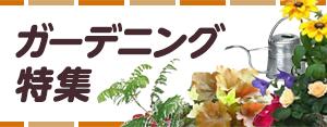 育てて楽しいガーデニング特集 花