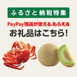 ふるさと納税特集 PayPay残高が使える、もらえる お礼品はこちら!