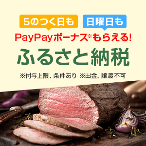 【SB祭パターン9】5のつく日も 日曜日も PayPayボーナスがもらえる! ※付与上限、条件あり ※出金、譲渡不可 ふるさと納税 さとふる・ふるなびのお礼品が選べる お礼品ランキングをチェック