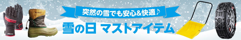 雪の日マストアイテム