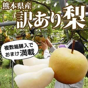わけあり梨