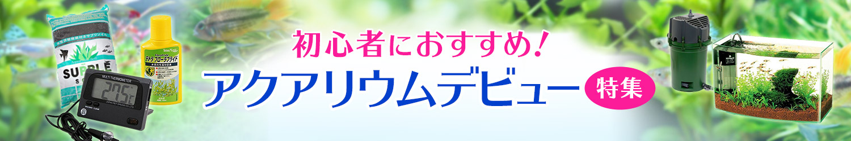 初心者におすすめ! アクアリウムデビュー特集 - Yahoo!ショッピング