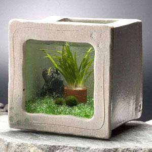 陶器の水槽