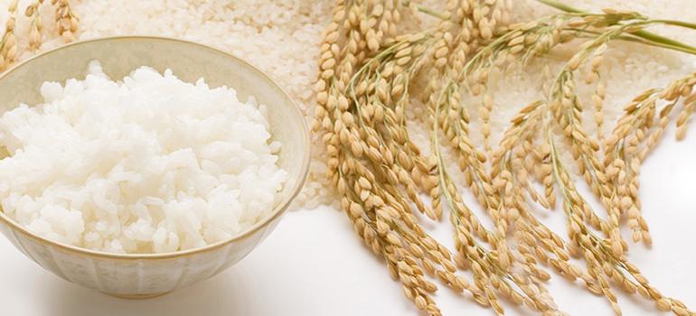 米、雑穀、粉類 | 食品 通販 - Y...