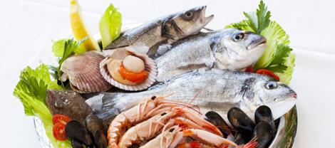 魚介、海産物のお礼品
