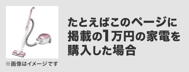 たとえばこのページに掲載の1万円の家電を購入した場合