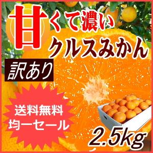 温州みかん2.5kg【訳あり】
