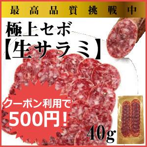 イベリコ豚 セボサラミ 熟成肉
