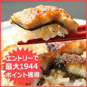 国産きざみうなぎ10食セット