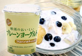栃木県産那須のおいしいプレーンヨーグルト