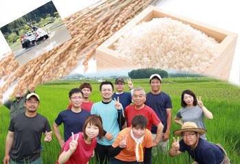 篠山産 農薬70%減コシヒカリ