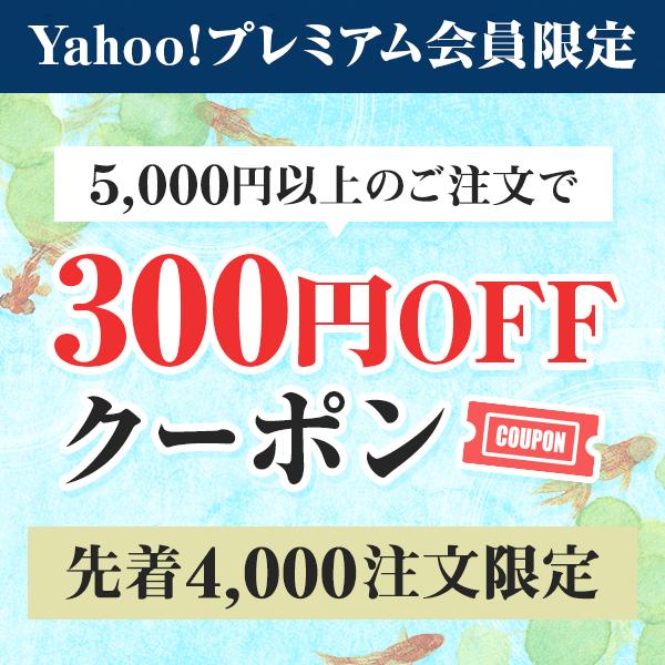 お中元特集2018 掲載ストア全品で使える300円OFFクーポン