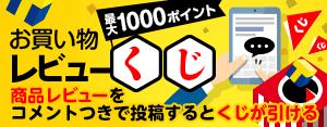 お買物レビューくじ_10月