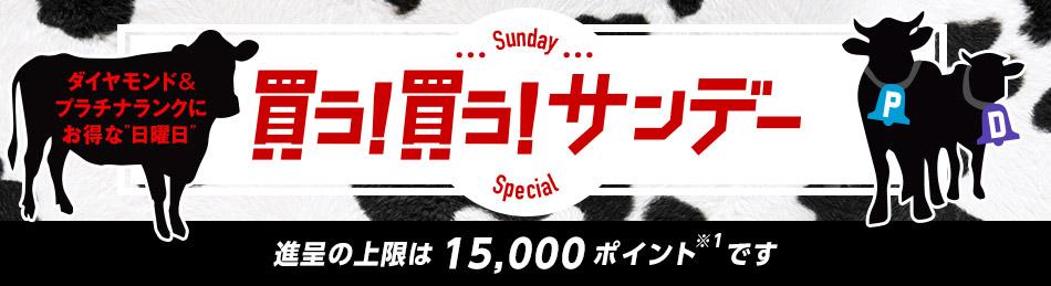 買う!買う!サンデー ダイヤモンド&プラチナランクにお得な日曜日  進呈の上限は 15,000ポイントです