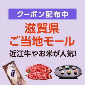 広告:滋賀県