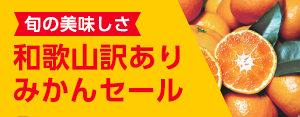 広告:siosaiy