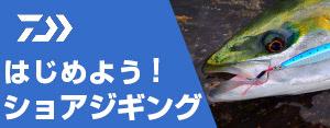 広告:daiwa-official