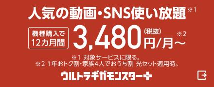 人気の動画・SNS使い放題(対象サービスに限る)機種購入で12カ月間月額3,480円(税抜)(1年おトク割・家族4人でおうち割 光セット適用時)から。ウルトラギガモンスタープラス(外部サイト)