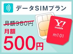 データSIMプラン1GB月額500円