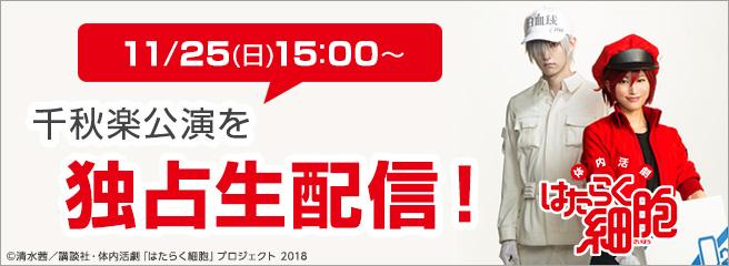 11/25(日) 15:00~ はたらく細胞の千秋楽公演を独占生配信!