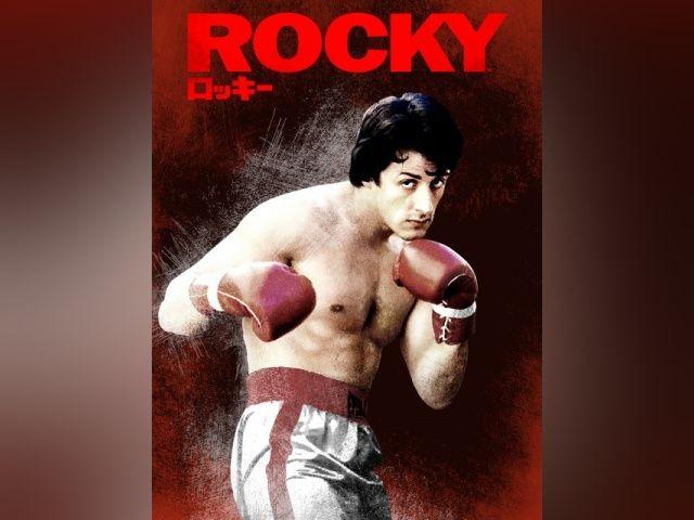 ロッキーの作品画像