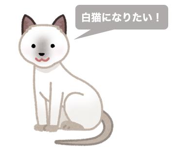 白猫の意思