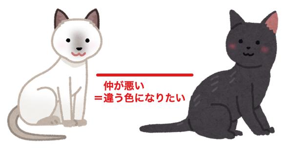 仲の悪い白猫と黒猫