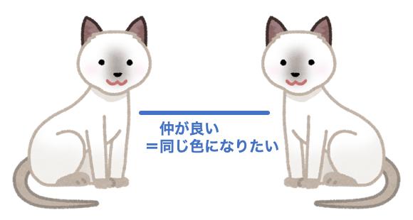 仲の良い白猫と白猫
