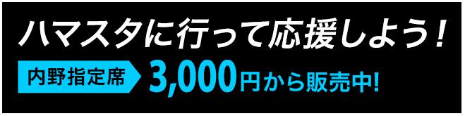 ハマスタに行って応援しよう!内野指定席3,000円から販売中!