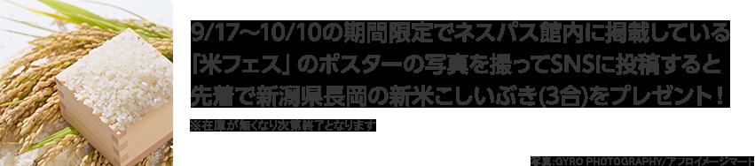 9/17〜10/10の期間限定でネスパス館内に掲載している「米フェス」のポスターの写真を撮ってSNSに投稿すると先着で新潟県長岡の新米こしいぶき(3合)をプレゼント! ※在庫が無くなり次第終了となります