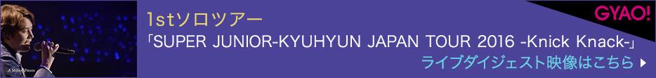 1stソロツアー「SUPER JUNIOR-KYUHYUN JAPAN TOUR 2016 -Knick Knack-」ライブダイジェスト映像はこちら