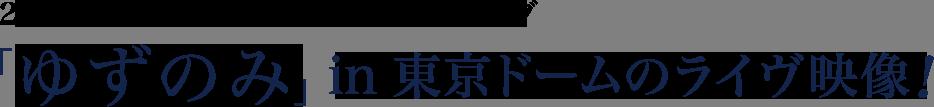 20周年突入記念、「ゆずのみ」in 東京ドームのライヴ映像!