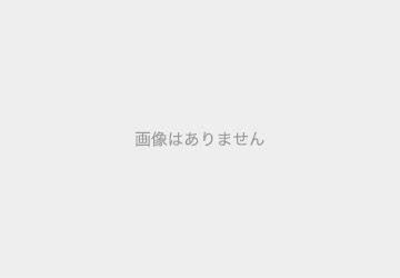 ユニバーサル・スペクタクル・ナイトパレード 特別鑑賞エリア入場券