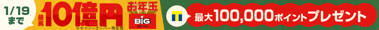 お年玉BIG購入キャンペーン Yahoo! toto