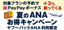 夏のANAお得キャンペーン -Yahoo!トラベル