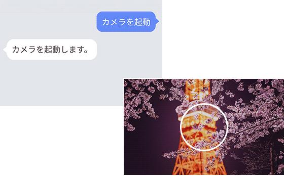 アプリ起動 画面イメージ